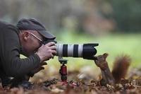 カメラマンとキタリス