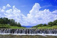 京都府 鴨川(葵橋の北から)