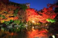兵庫県 姫路城 好古園