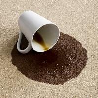 カーペットにコーヒーをこぼした