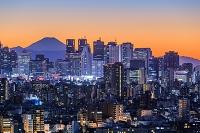 東京都 文京区 新宿ビル群と富士山