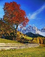 イタリア トレンティーノ・アルト・アディジェ州 フネス谷