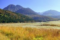 大分県 タデ原湿原の草紅葉と三俣山 長者原