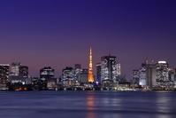 東京都 有明北緑道公園から東京タワーの夜景