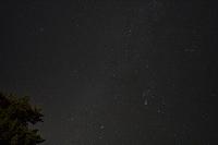 星座 オリオン座 こいぬ座 おおいぬ座(部分) 冬の大三角