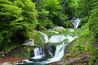 長野県 横谷峡 おしどり隠しの滝