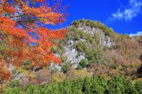 三重県 紅葉の香落渓