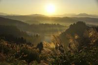 新潟県 朝もやに包まれた山並みとスススキ