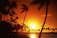 アメリカ合衆国 ハワイ アナエホオマル・ビーチ
