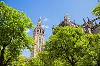 スペイン セビリア セビリア大聖堂 ヒラルダの塔