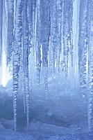 山梨県 氷柱