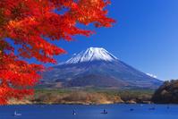 山梨県 精進湖と富士山