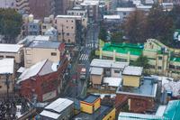 板橋区 下町 雪 救急車