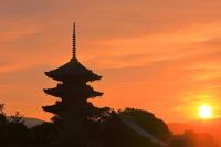 京都府 日の出と東寺の五重塔