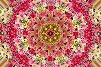 沢山の花の万華鏡