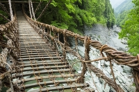 徳島県 かずら橋