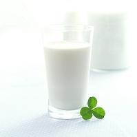 クローバーと牛乳