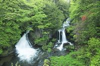 栃木県 竜頭ノ滝とツツジ