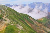 長野県 爺ケ岳から湧く雲と立山右奥の山