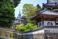 長崎県 寺院と教会の見える風景