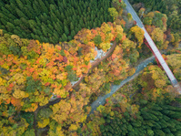 松川渓谷 高井橋と紅葉 俯瞰 高山村 長野県