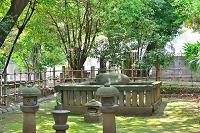 東京都 品川区 東海寺 沢庵和尚墓所