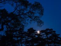 福島県 月