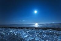 北海道 十勝川河口 ジュエリーアイスと月光