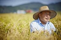 稲田と農夫