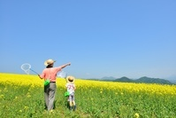 花の高原で遊ぶファミリー