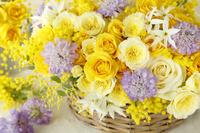黄色いバラとミモザとスカビオサと