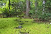 福井県 旧玄成院庭園 平泉寺