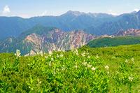 岐阜県 丸山から大天井岳中央奥の山