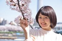 桜に手を添える女性