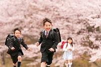 桜の公園で走るランドセルの日本人の小学生