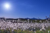 奈良県 曽爾高原