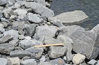 安倍川 中流 川原の石