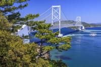 徳島県 新緑と鳴門海峡と大鳴門橋