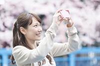 桜をスマホで撮る日本人女性