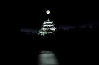 愛知県 スーパームーンと名古屋城夜景
