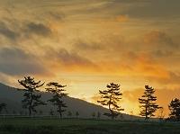 岡山県 蒜山高原