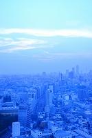 東京都 文京シビックセンターから見る池袋方面の街並