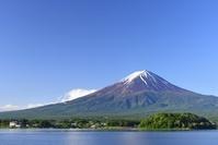 山梨県 初夏の大石公園より富士山