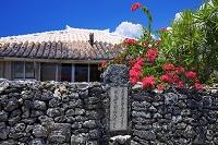 沖縄県 ブーゲンビレア咲く安里屋クヤマの生誕の地