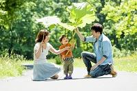 公園で大きなフキの葉で遊ぶ息子と両親