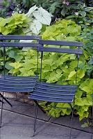 2脚の椅子