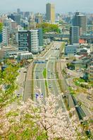 春の熊本市街地