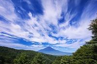 山梨県 夏の二十曲峠より富士山
