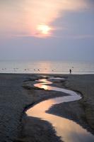 浜辺を歩く男性