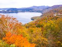 秋田県 十和田湖 紫明亭展望台 紅葉
